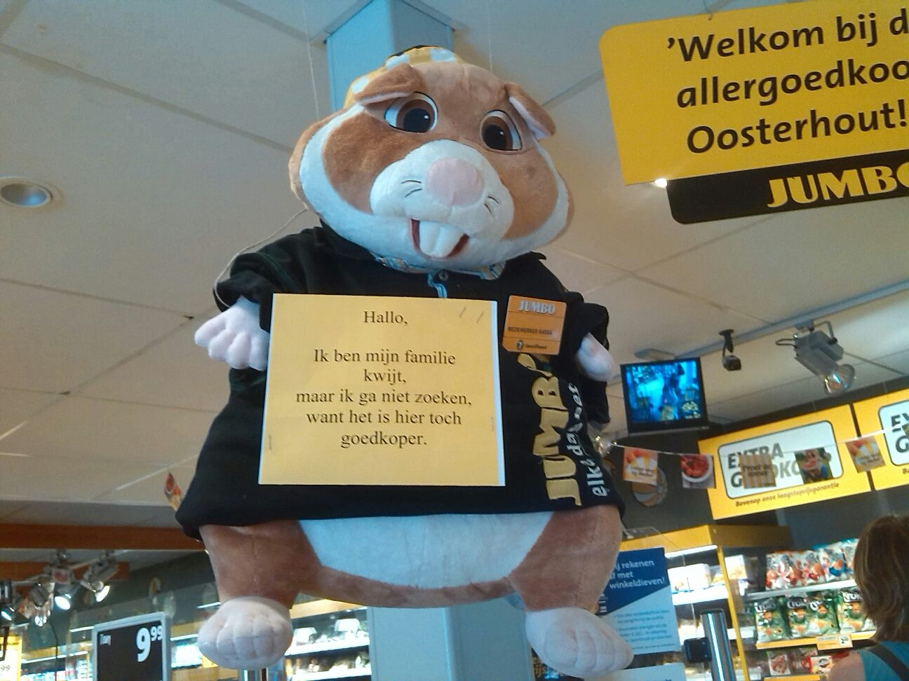 Nieuws: Jumbo-hamster ontdekt in Oosterhout