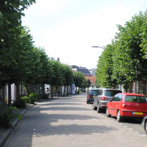 Wat ik nog kwijt wil aan Oosterhout (2)