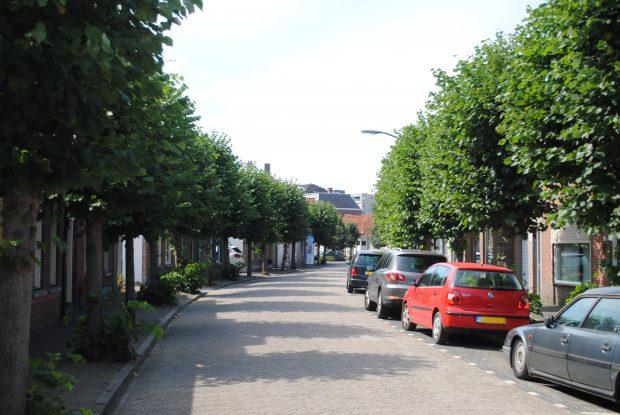 Nostalgic Sunday: De Zandheuvel!