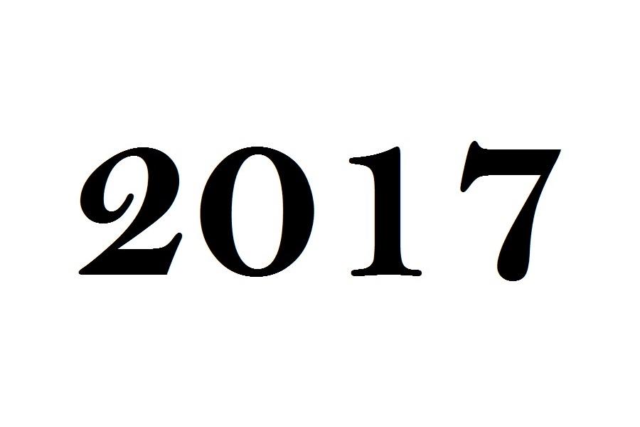 Gelukkig Nieuwjaar! 2017 is begonnen in Oosterhout!