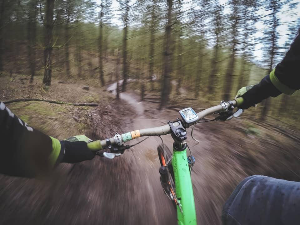 Mountainbiker in bos