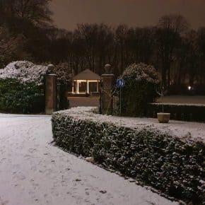 Foto's - Sneeuwdag nummer 1 in Oosterhout
