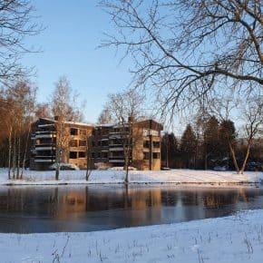 Foto's – Sneeuwdag nummer 3 in Oosterhout